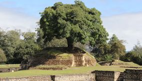 Calm nature Iximche Guatemala