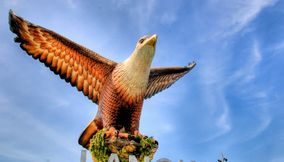title: Reddish brown eagle majestically poised for flight Langkawi