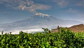 Silent Vineyard Armenia
