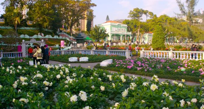 title: The beautiful flowers park Macau