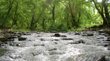 title: Wild River Georgia Armenia
