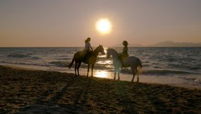 title: Charming horses Kos Greece
