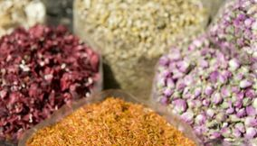 Dried Flowers for Sale in UAE