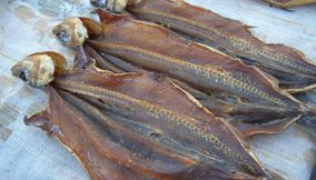 Delicious Freshly Caught Smoked Fish in Russia