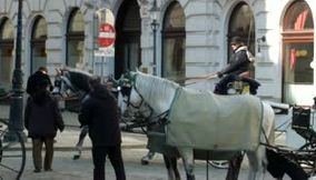 Video of Horses Galloping in Vienna Austria