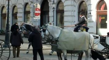 title: Video of Horses Galloping in Vienna Austria