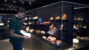 title: Student Admiring the Minerals on Display