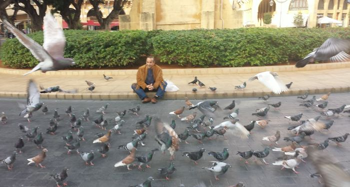 title: Sitting with the Pigeons in Downtown Beirut