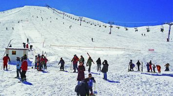 Families and Children Playing on the White Snowy Slopes