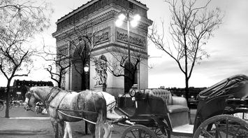 title: Cheval Arc Triomphe