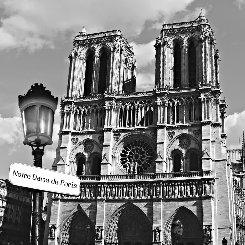 Notre Dame Amour
