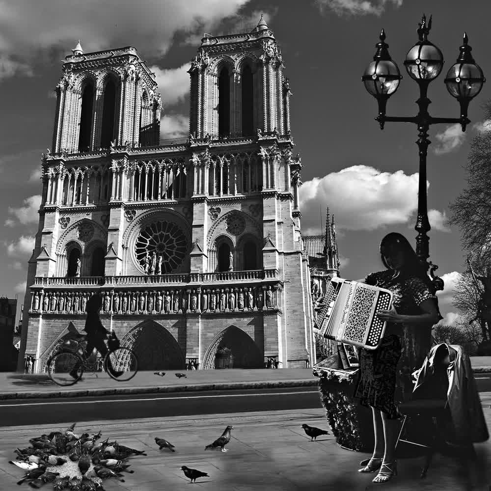 title: Notre Dame People