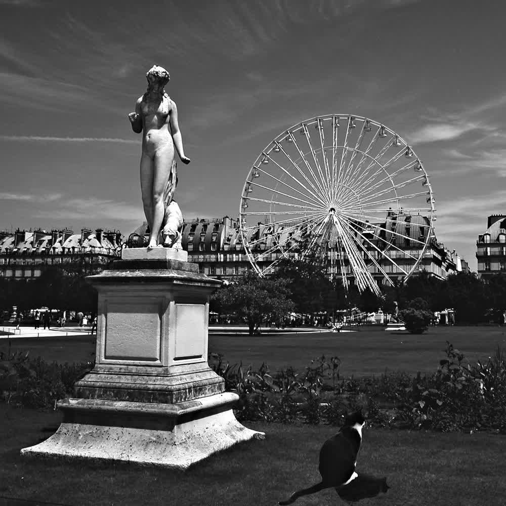 title: Statue Roue