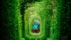 title: Beautiful Tunnels around the world