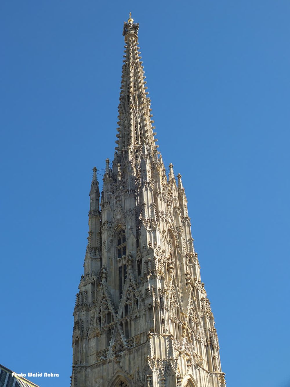 title: St Stephen s Cathedral Vienna