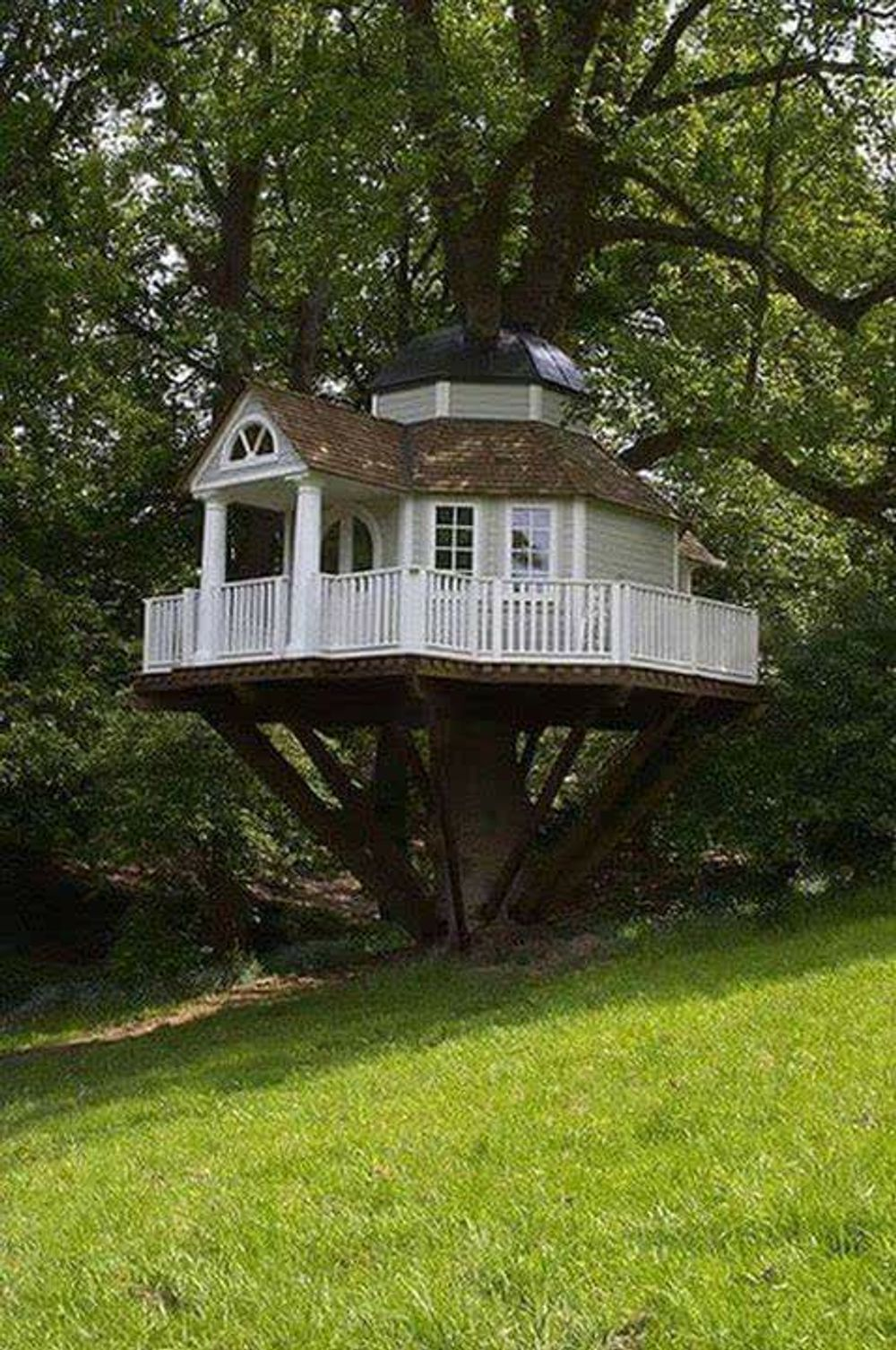 title: Tree House from around the world