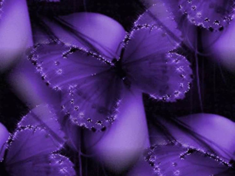title: Purplish Purple