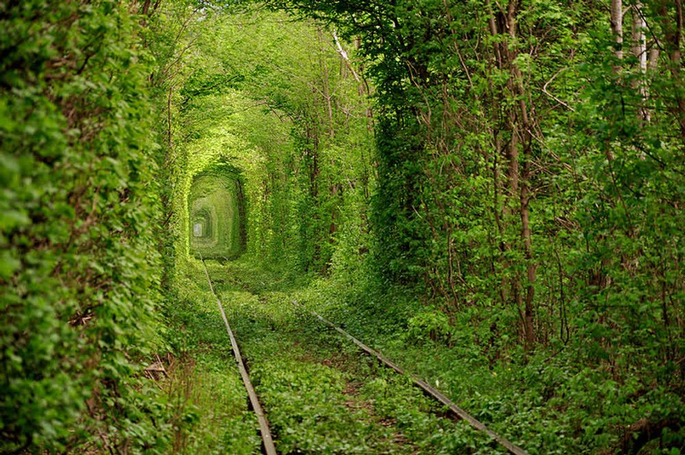 title: Tunnel Of Love Ukraine