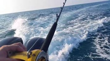 Discover Lebanon How to fish for tuna