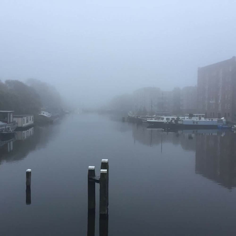 title: Foggy Dutch Morning